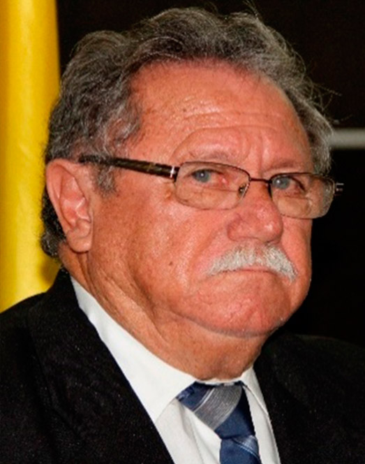 Sr. Lino Cantos Aliatis